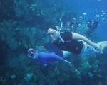 snorkeling-07